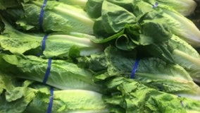 Target joins Walmart in tainted-lettuce recall as Thanksgiving nears