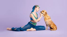 'The Muttcracker': Ballerinas pose with shelter pets in magical holiday photo series