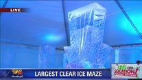 Largest Clear Ice Maze Sets Up in DC