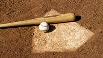 Local Minor League Baseball teams looking forward to next year after 2020 season canceled