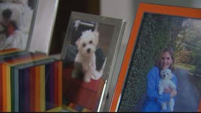 Owner speaks out about dog that died at Southern Maryland doggie day care