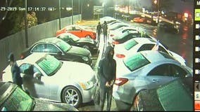 Luxury cars stolen from Waldorf dealership