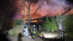'Unfathomable tragedy': Fire kills more than 30 animals at German zoo in first minutes of 2020