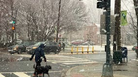 First snowfall of the new year impacts evening commute across DC region