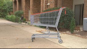 Virginia Senator proposing fines for owners of abandoned shopping carts