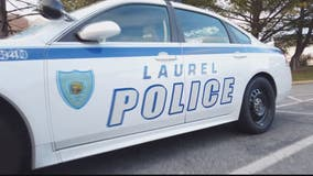 Police search for suspect they say killed seagulls in Laurel parking lot