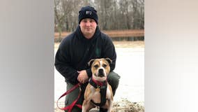 Rescued dog becomes first pit bull arson detection K9 in New Jersey