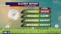 Early seasonal allergies caused by high pollen count