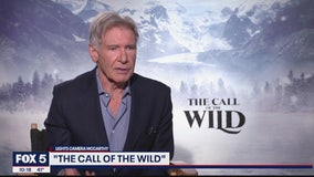 Harrison Ford stars in The Call of the Wild