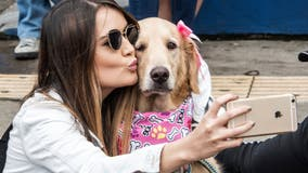 Lots of online daters have used someone else's dog in their profile picture, survey finds