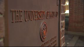 University of Maryland, College Park graduate sues university for being served food with gluten