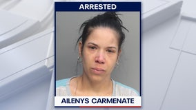 South Florida mother accused of trying to murder baby, 2 children