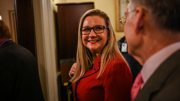 Virginia Republican senator announces gubernatorial run