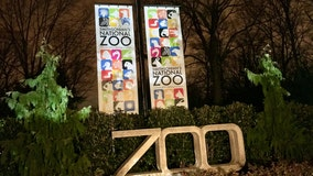 Smithsonian's National Zoo may be closed to visitors, but the animals are still having a blast inside