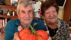 Skokie couple with COVID-19 dies hours apart
