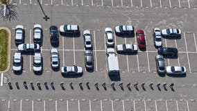 Fairfax County police uplifts community with powerful display