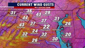 Wind Advisory issued for much of DC region until Monday evening