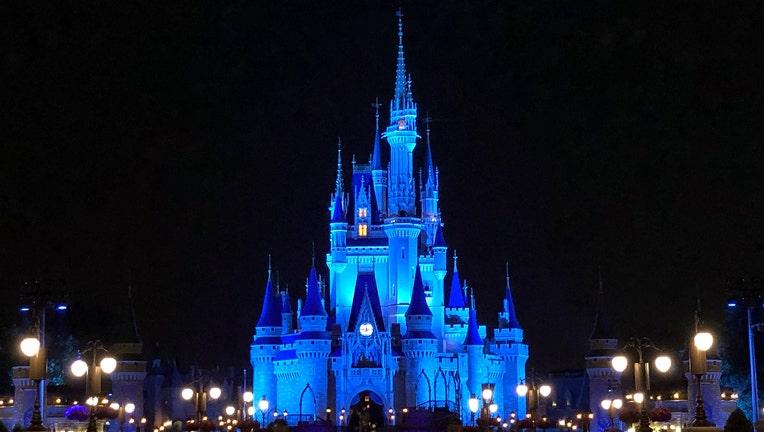 Cinderella Castle Medical Salute