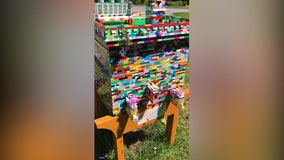 Un-bee-lievable! Beekeeper builds fully functioning beehive entirely out of LEGOs
