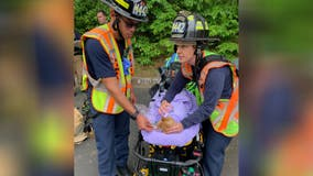 Fairfax County home owner, cat rescued from house fire