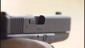 Alexandria gun control ordinance vote expected on June 20