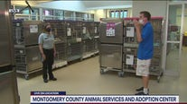 Montgomery County Animal Services and Adoption Center is reopening for adoptions