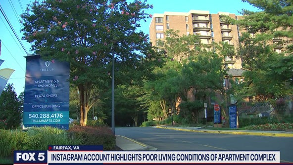 Parody Instagram account calls attention to problems at Northern Virginia apartments