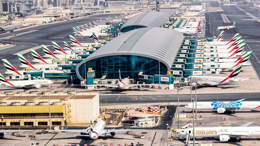 Coronavirus-sniffing dogs deployed at Dubai Airport with 91 percent accuracy: report