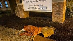 Dead deer left on Georgetown sidewalk