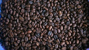 Coffee may help colon cancer patients' longevity, study finds