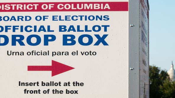 What's on the DC ballot?