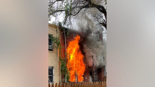 Two dogs killed in Northeast DC fire