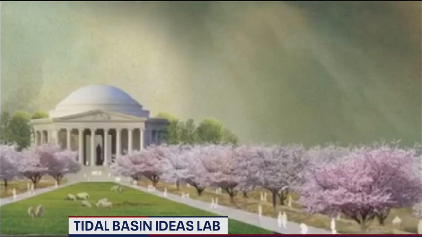 Saving DC's Tidal Basin focus of new project to keep landmark from being reclaimed by nature