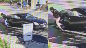 Councilmember's vehicle stolen as car thefts surge in DC region