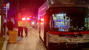 Pedestrian struck by bus in Takoma Park