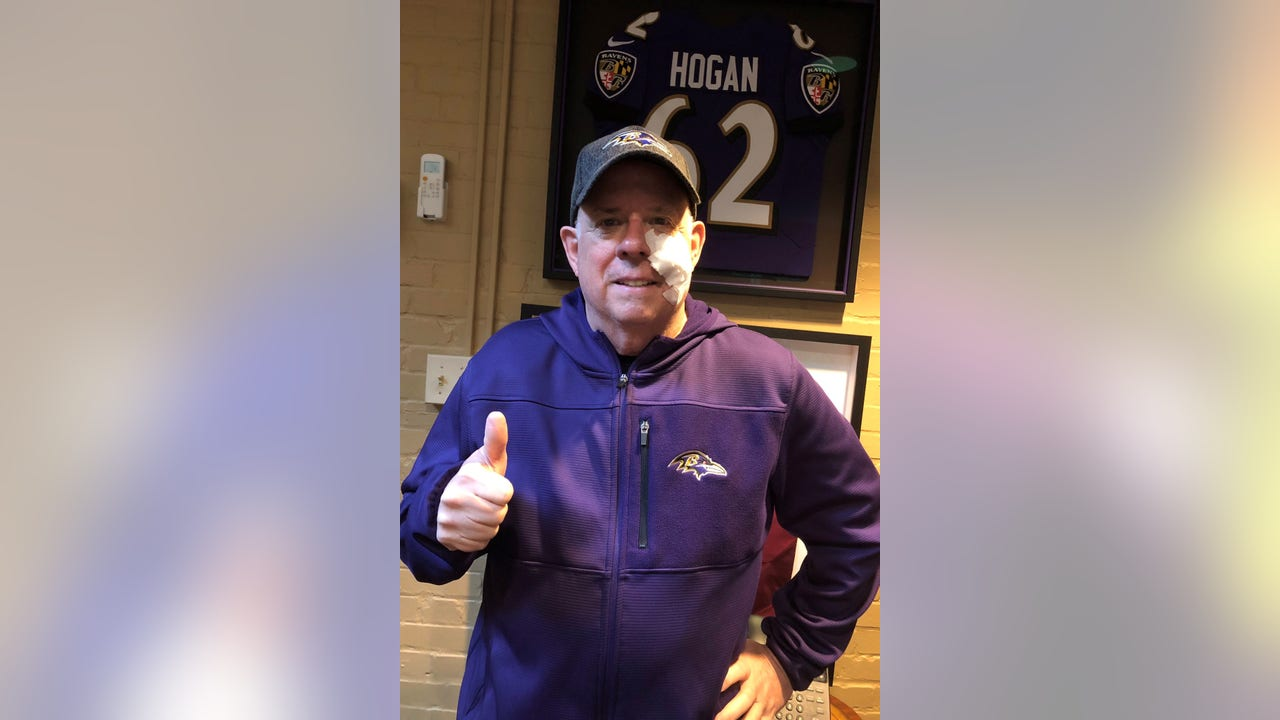 Larry Hogan: `No pain, no gain`