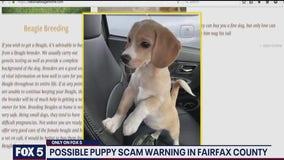 Fairfax Countypolice investigate new alleged puppy scam