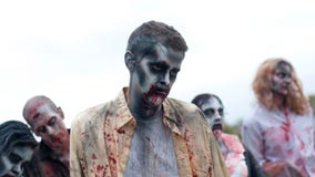 Find out how to become an extra on 'The Walking Dead: World Beyond' in Virginia