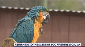 Reston's 'Roer's Zoofari' reopens after fire that killed 2 giraffes, including 'Waffles'