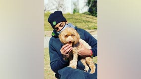 Wizards' Troy Brown Jr. finds missing dog after nearly 2-day search