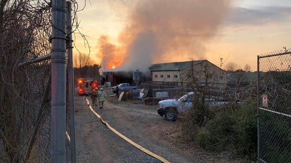 Two giraffes found dead after fire at Roer's Zoofari in Reston
