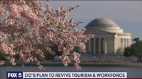 DC launching plan to retrieve tourism and workforce