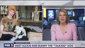 Bunny the Talking Dog and owner Alexis on internet fame and more