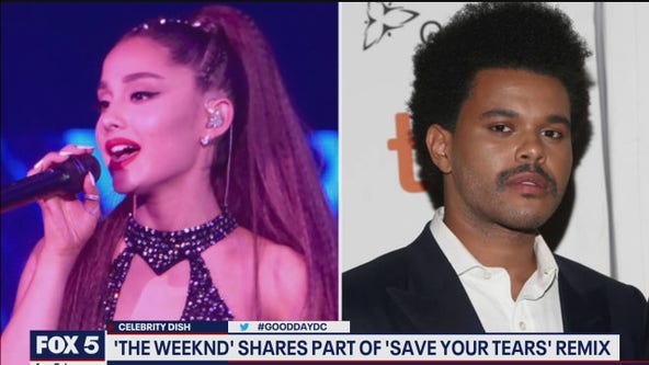 CELEBRITY DISH: Zac Efron breakup and The Weeknd remix tease