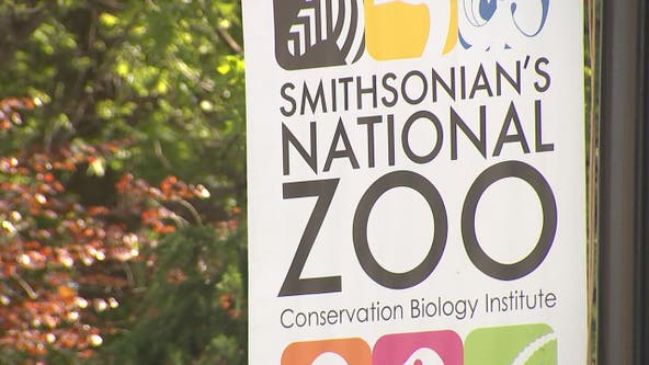National Zoo, several Smithsonian museums to reopen in May
