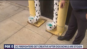 DC firefighters find unique solution for stolen doggie water bowls