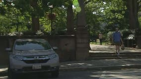 DC attacker posing as cop, pepper spraying victims, police say