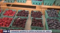 Rosslyn Farmer's Market opens up to serve weekday shoppers