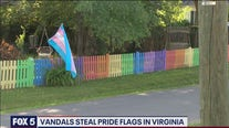 Vandals steal pride flags in Loudoun County