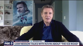 Pierce Brosnan and Liam Neeson talk their new movies
